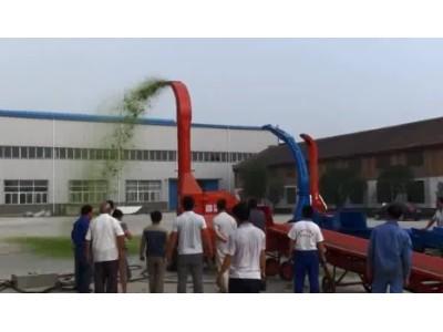 洛阳四达9Z-30青贮铡草机作业视频