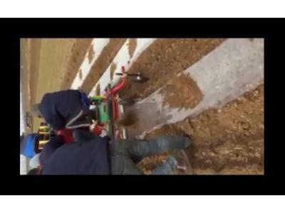 青岛璞盛2CM-2单垄双行马铃薯种植机视频