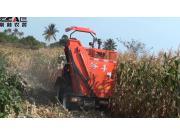山东大启2016年海南玉米收割机作业演示视频