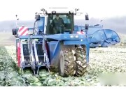 ASA-LIFT卷心菜收割机 看国外如何农机收获卷心菜