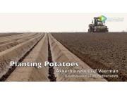 挑战者MT765D配马铃薯播种机作业
