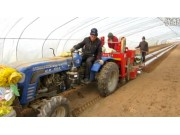 洪珠2CM-2-1双垄双行马铃薯种植机