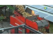 麦迪玛MB111马铃薯装箱机