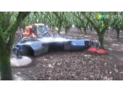 Porter公司坚果归铺机-作业视频