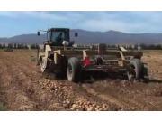 Double L公司889马铃薯收获机-作业视频