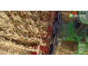 格林豪夫玉米割台作业视频