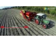 格立莫最佳的土豆收获技术