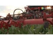 格立莫REXOR930甜菜收获机和RUW4000转运拖车