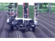 洋马PF2R型两行乘坐式全自动移栽机和PH1型单行步进式半自动移栽机