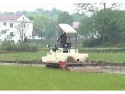 沃得猛龙_WD3100A_一体式履带旋耕机_作业视频