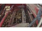 格立莫Varitron270自走式土豆收获机-作业视频