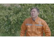 年挣20万,他用亲身经历告诉你无人机打橙子树行不行