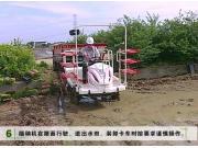 洋马乘坐式插秧机VPD系列操作保养视频