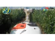 博格公司果园用弥雾机和喷药机作业视频