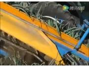 EUROPA公司P250型韭葱收获机视频