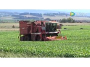PMC公司GB3300型青豆收获机视频