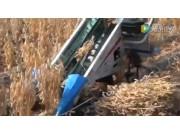 Hanseo公司BH710手扶式黄豆收获机视频