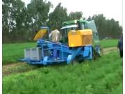 EUROPA公司Euro2001背负式胡萝卜收获机视频