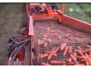 Nobels公司3B系列胡萝卜起收机视频