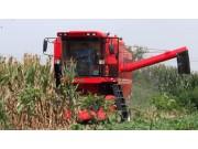 中农博远4YL-5玉米联合收获机作业视频