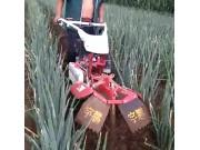 大葱开沟培土机作业视频
