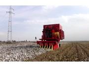 钵施然4MZ-3A自走式棉花收获机作业视频