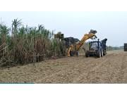 ������Ʊ����app_柳工S935T切段式甘蔗收获机现场演示视频