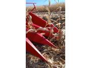 山东新农发三行四驱玉米机~割台落的低,贴地面收割矮棒,收倒伏玉米效果好