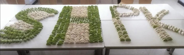 常林派克公司组织迎新年包饺子、聚餐活动