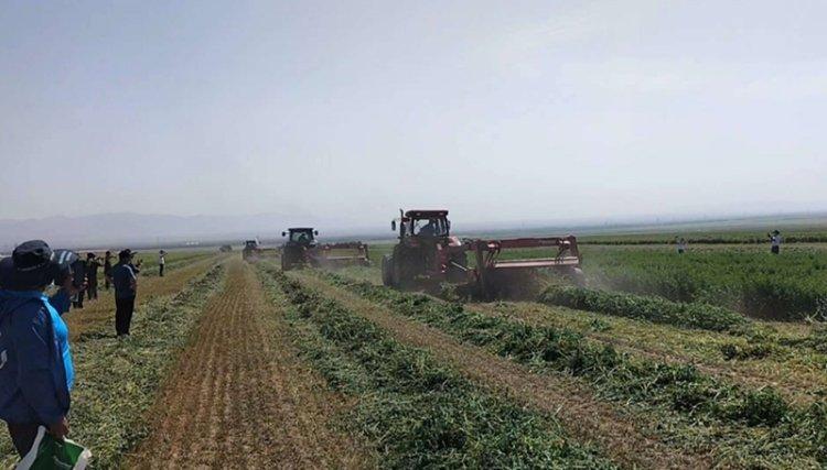格蘭牧草設備,助力新疆草業發展