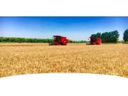力挺麦收,东方红收获机、机具有事儿到这里找