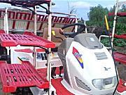 出售2012年洋马VP6高速插秧机