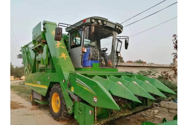 金大丰4YZPSJ-4茎穗兼收玉米收获机