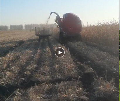 牧神4YZB-4B型自走式穗茎兼收玉米收获机