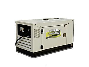 大泽10千瓦柴油发电机