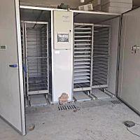 蚌埠依愛EIF(C)DMS-19200箱體式孵化機