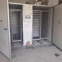 蚌埠依爱EIF(C)DMS-19200箱体式孵化机