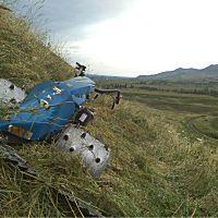 意大利 BCS738柴油割草机