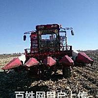 中聯4YZ-4(先鋒4160F)自走式玉米收割機