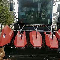 山東國豐4YZQP-4型自走式穗莖兼收玉米收獲機