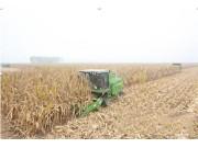 从人收到机械收穗 再到机械收粒——中联重科率先推出玉米籽粒收获机