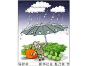 警惕政策性农业保险贪腐案多发