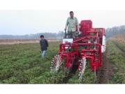 """压低粮食生产成本可寄望""""高效""""农机化"""
