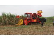"""甘蔗生产机械化:让制糖企业进入""""第一车间"""""""