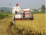 600多名跨区农机手南跑两广、北至陕甘 短短4个月赚回3000万元