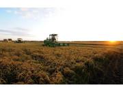 农业转型发展 需调整收获机市场航向
