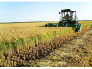 排放標準升級 倒逼農機業綠色轉型