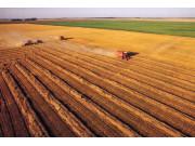 瞿长福:农业供给侧改革不是简单加减法