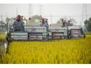 農業機械化:降低農業生產成本提高國際競爭力的關鍵(下)