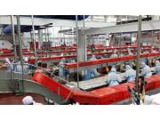 进一步发挥补助政策作用促进加工业转型升级